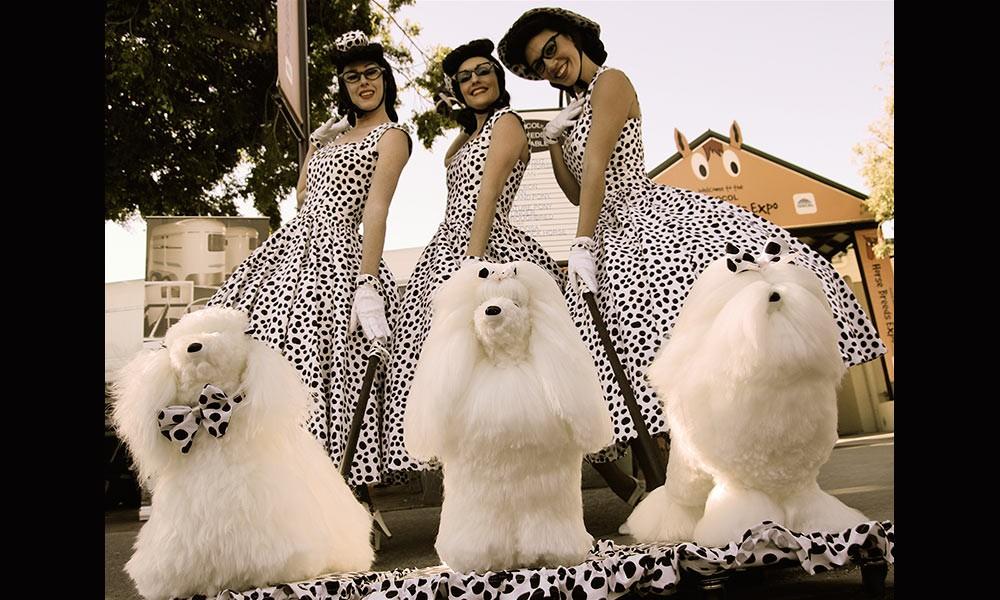 Poodle-Ladies
